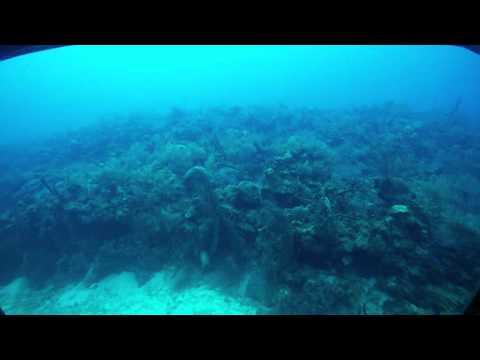 Grand Cayman Submarine Excursion