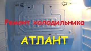 Ремонт холодильника АТЛАНТ МХМ 161