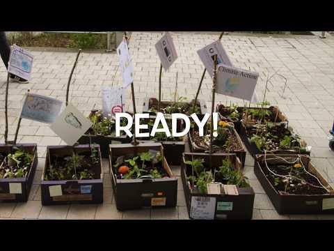 🌳School Gardens | Sustainable Development Goals