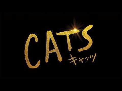 実写化映画『キャッツ』無料動画をフルで視聴する方法【字幕/吹替】