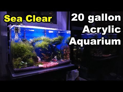 SeaClear 20 Gallon Acrylic Aquarium Tank