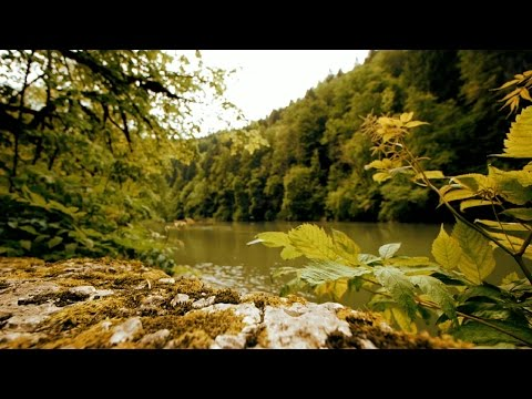 Music Therapy For Stress Relief And Healing: Relaxing New Age Music For Soul, Relaxation And Sleep