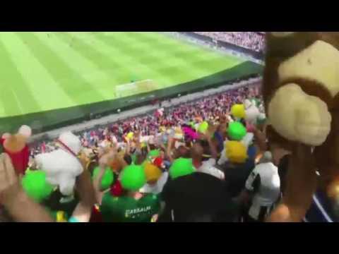 Kippenvelmoment in De Kuip: ADO Den Haag-supporters gooien honderden knuffels naar zieke kinderen