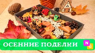 Осенние поделки с детьми. Лес в коробке. ИДЕИ от Nataly Gorbatova