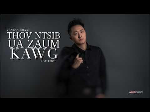 Veness Chang - Thov Ntsib Ua Zaum Kawg (Cover) Originally Pov Thoj #2019