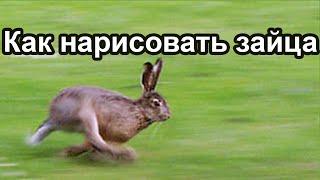 Как нарисовать зайца(на ютуб не забудь подписаться мой твитч канал http://www.twitch.tv/rih4rd At All - Ark Patrol featuring Veronika Redd Звукозапись 5:33 - 7:13..., 2016-06-18T01:12:58.000Z)
