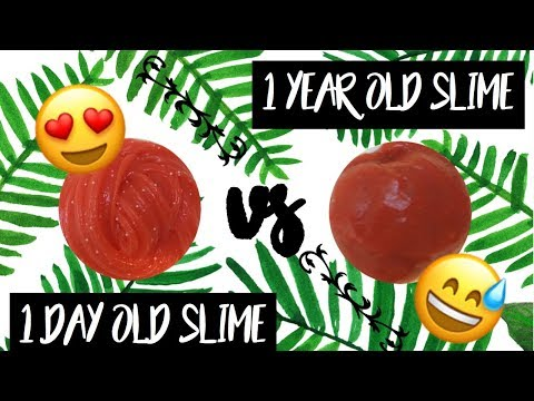 1 YEAR OLD SLIME Vs. 1 DAY OLD SLIME! | Mayel