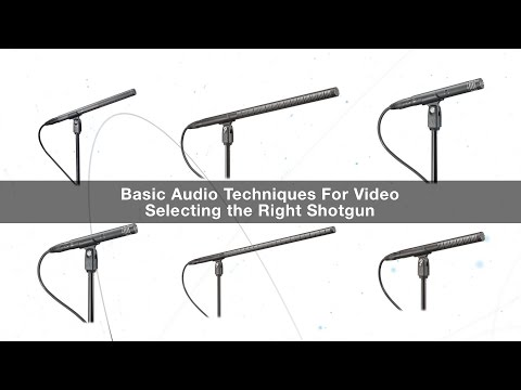 Basic Audio Techniques for Video: Selecting the Right Shotgun Mic