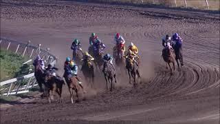 Vidéo de la course PMU PREMIO GEO WINE HANDICAP