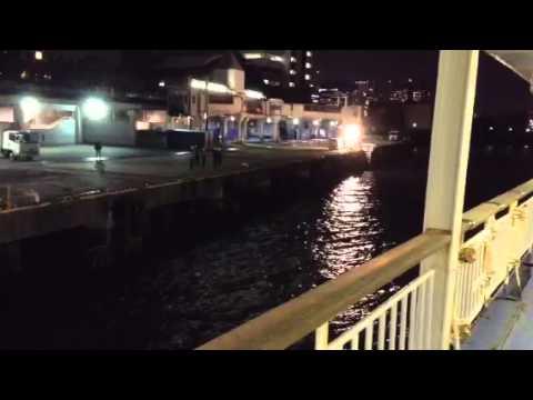 竹芝桟橋に接岸するさるびあ丸
