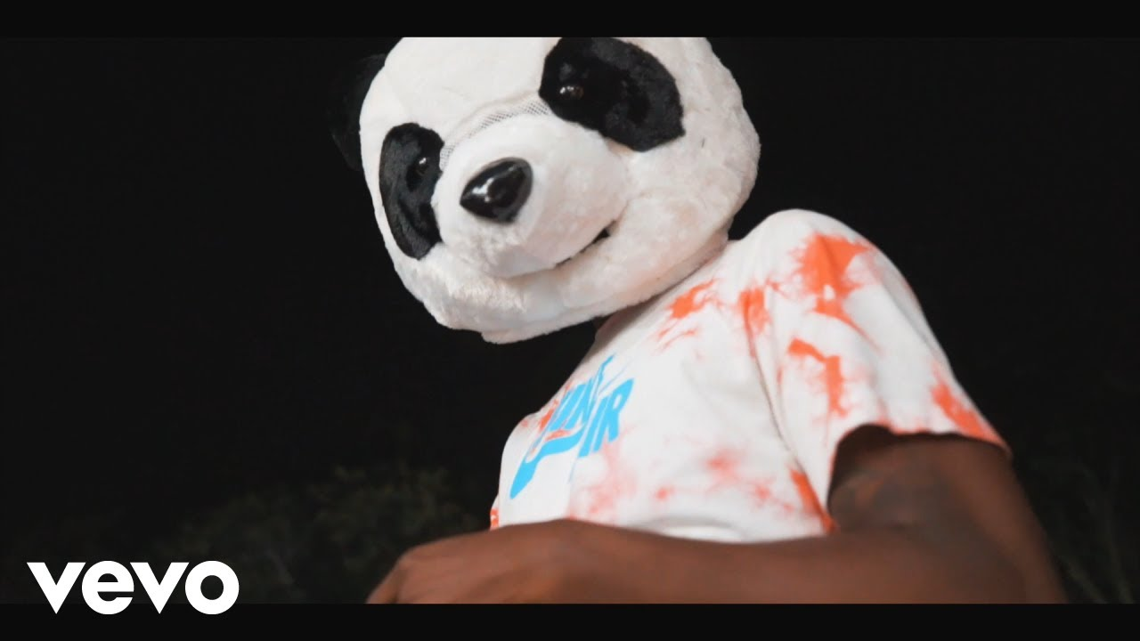 Download K Lion - Private Zess (Official Video) ft. LRG