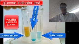 Diffusion Through a Membrane Lab- Chemical Indicators