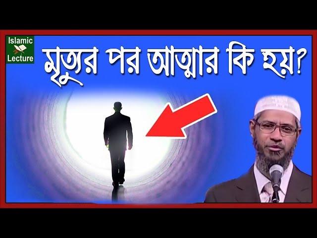 মৃত্যুর পর আত্মার কি হয়? | Dr Zakir Naik Bangla Lecture New Part-92