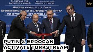 Russia, Turkey, Serbia, Bulgaria celebrate TurkStream.