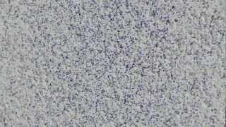 Затерта структура та механізоване напилення(, 2013-03-22T16:25:47.000Z)