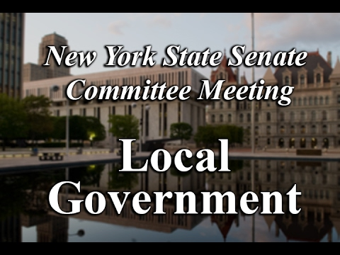 Senate Standing Committee on Local Government - 01/31/17