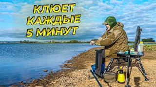 Рыбалка на Каме Воткинское водохранилище Проклятье чехони Не Удачный улов