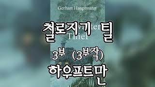 [오디오북] 철로지기 틸 (3/3) - 하우프트만