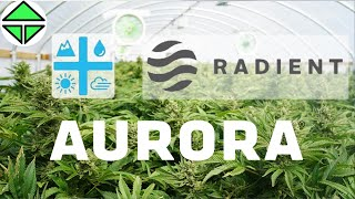 Aurora Cannabis, Radient Technologies advantages and future market (drops now to go up later)
