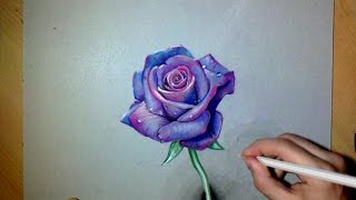 How i draw a realistic Purple Rose