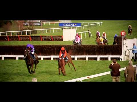 Denman: Legend Of National Hunt
