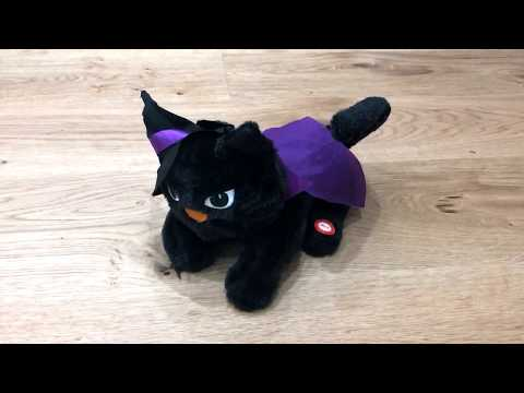 Singing Halloween Toy Cat