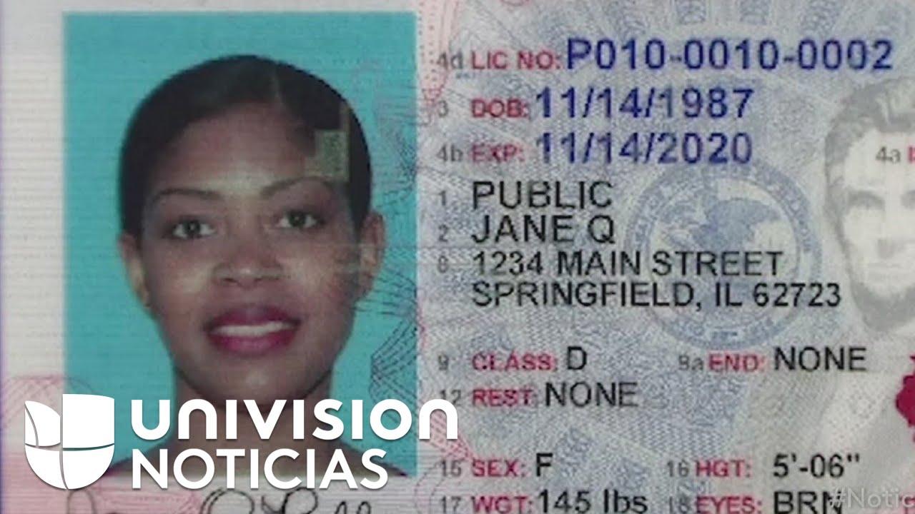 - Licencias Diferente Conducir Identificaciones Comenzarán De Youtube Y A Lucir
