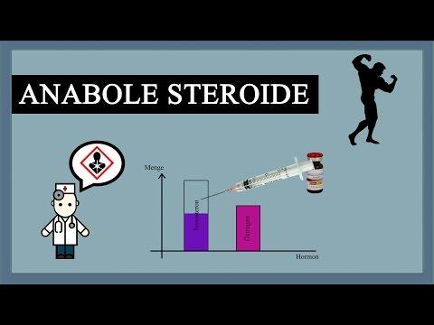 Anabole Steroide zerstören