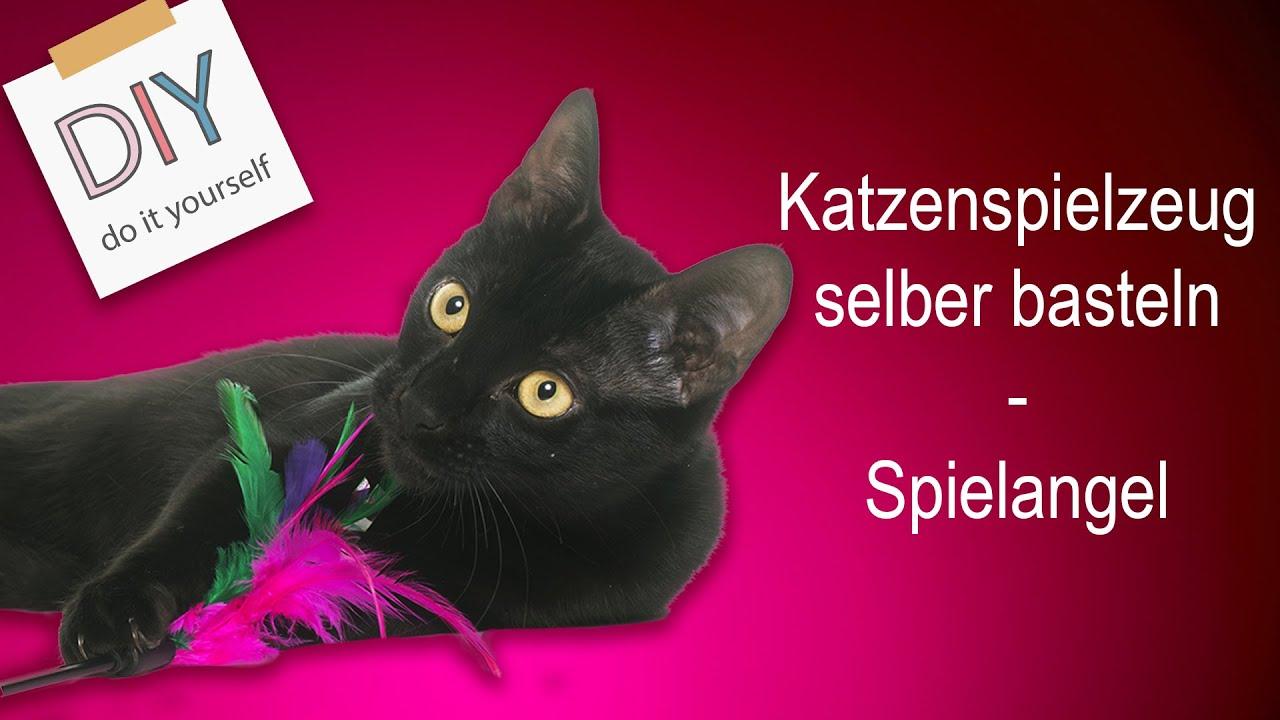 Katzenspielzeug Selber Machen Tipps Und Tricks