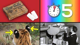 30 Cosas que no sabias hace 5 minutos [53]