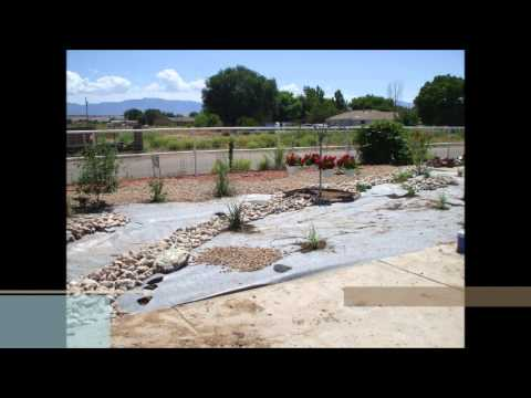 Xeriscape Conversion