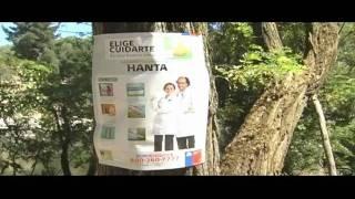 HANTA VIRUS Y FISCALIZACIÓN CAMPING.mp4