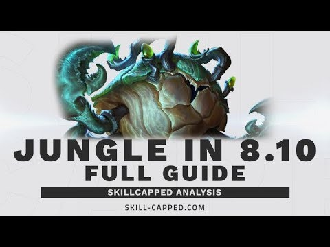 The ONLY 8.10/8.11 Jungle Guide You Need | SkillCapped