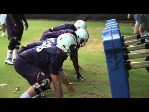 Auburn Sports Report: August 20