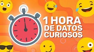 1 HORA SIN PAUSAS DE DATOS CURIOSOS! (XpressTV)