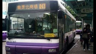 愉景灣巴士DBTSL  C4  愉景灣碼頭↺愉景北商場 (循環線) @ DBAY183