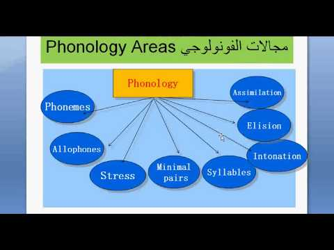 Phonology Lesson 1
