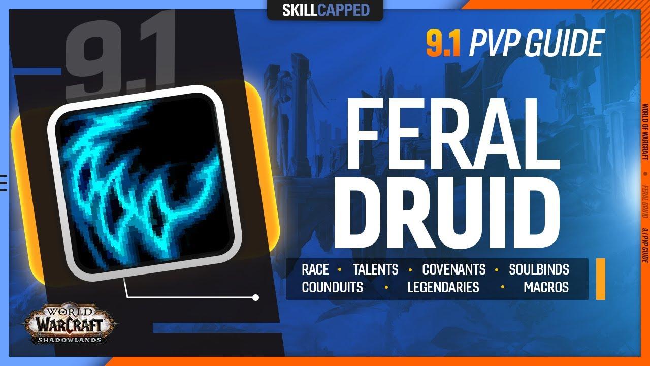 FERAL DRUID 9.1 PvP Guide | Best Race, Talents, Covenants, Soulbinds, Conduits, Legendaries & Macros