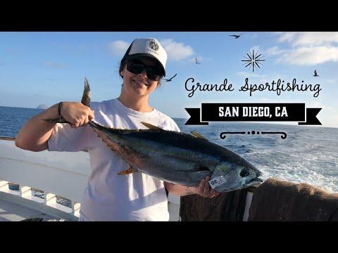 Yellowfin Tuna - Grande Sportfishing - San Diego, Ca