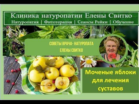Рецепт Советы натуропата Елены Свитко моченые яблоки для лечения суставов