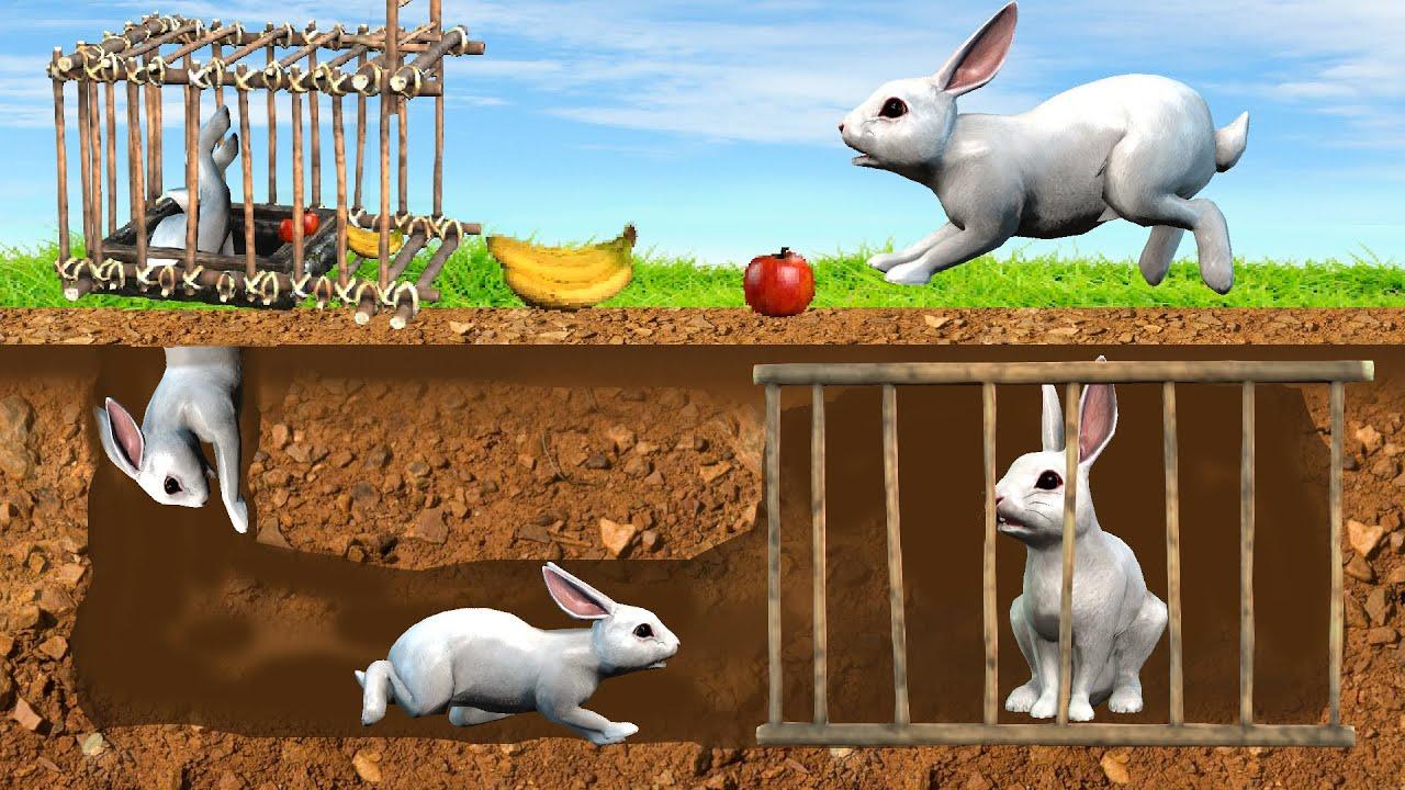 भूमिगत विशालकाय खरगोश जाल Underground Giant Rabbit Trap Moral Stories Hindi Kahaniya Fairy Tales