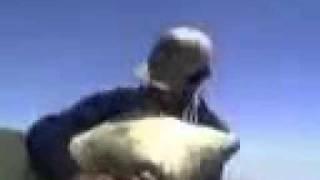 AĞRI (AGIRÎ) BAZİD TILIM- MÛZÎKA KURDA