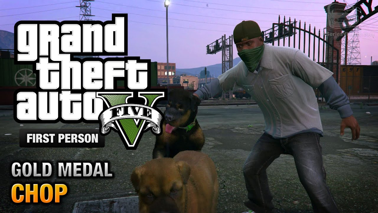 GTA 5 - Mission #5 - Chop [First Person Gold Medal Guide
