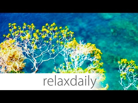Instrumental Music - calm, smooth, inspiring - N°004 (4K)