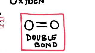 Double and Triple  Covalent Bonds