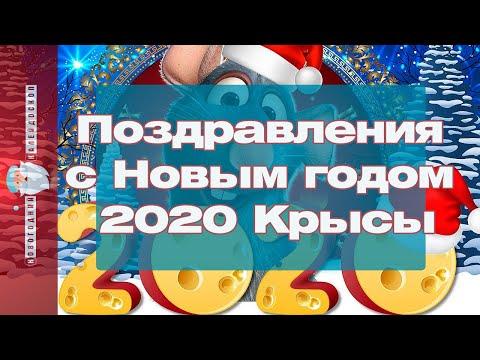 Поздравления с Новым годом 2020 Крысы, в стихах и прозе