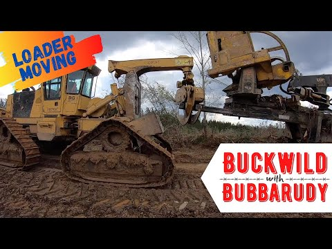 Buckwild With Bubbarudy: Loader Moving With The Track Tigercat Skidder- Logging Equipment