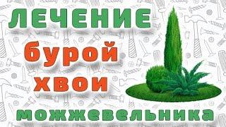Лечение побуревшей хвои можжевельника виргинского.(, 2016-05-24T18:59:05.000Z)
