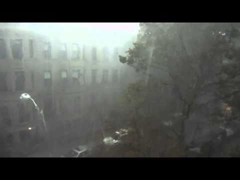 Brooklyn Tornado 2010