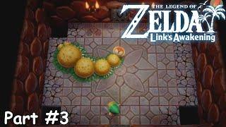 Slim Plays  Zelda: Link's Awakening (NS) - #3. A Tale of Tails